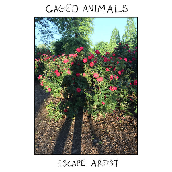 Caged Animals - Escape Artist