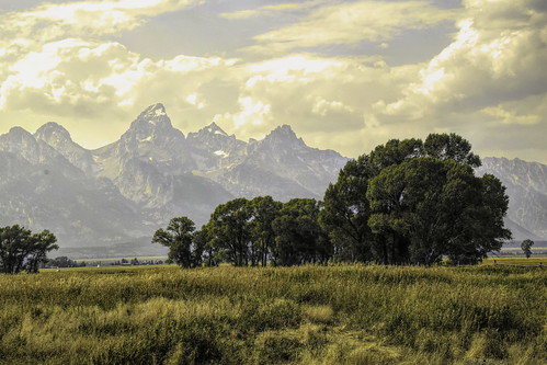mormon row tetons_DSC0784-Edit