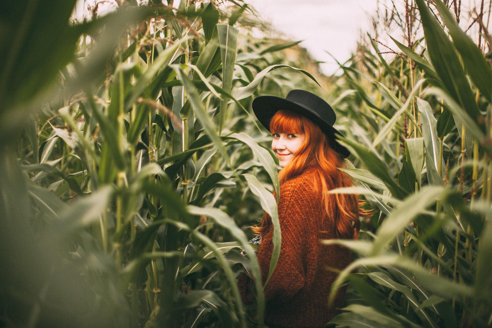 corn field-13