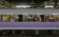 A Shinkansen train stopping at Tokyo Station