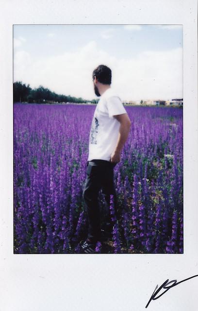 """Fujitivas_63 """" Purple Spring """""""