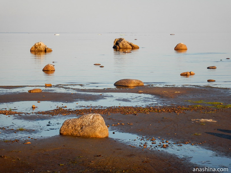 Балтийское море в Зеленогорске