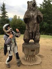 Fake bear