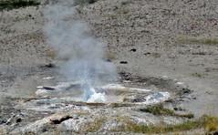 Sprinkler Geyser eruption (2:28-2:48 PM, 10 August 2018)