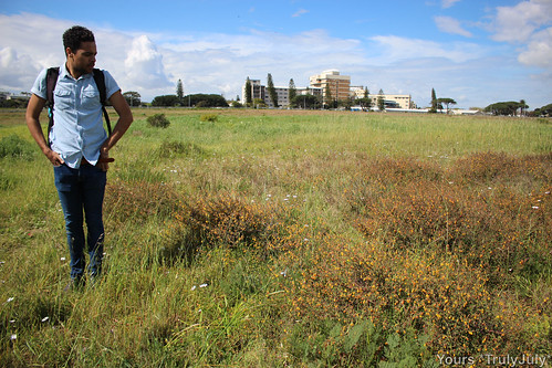 Alex Lansdowne gives great insight to the plants and flowers on Rondebosch Common.