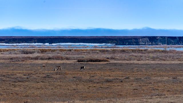 Tundra and Sag River