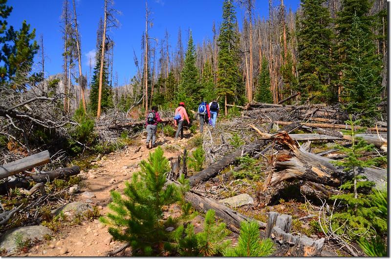 Salmon Lake Trail (4)