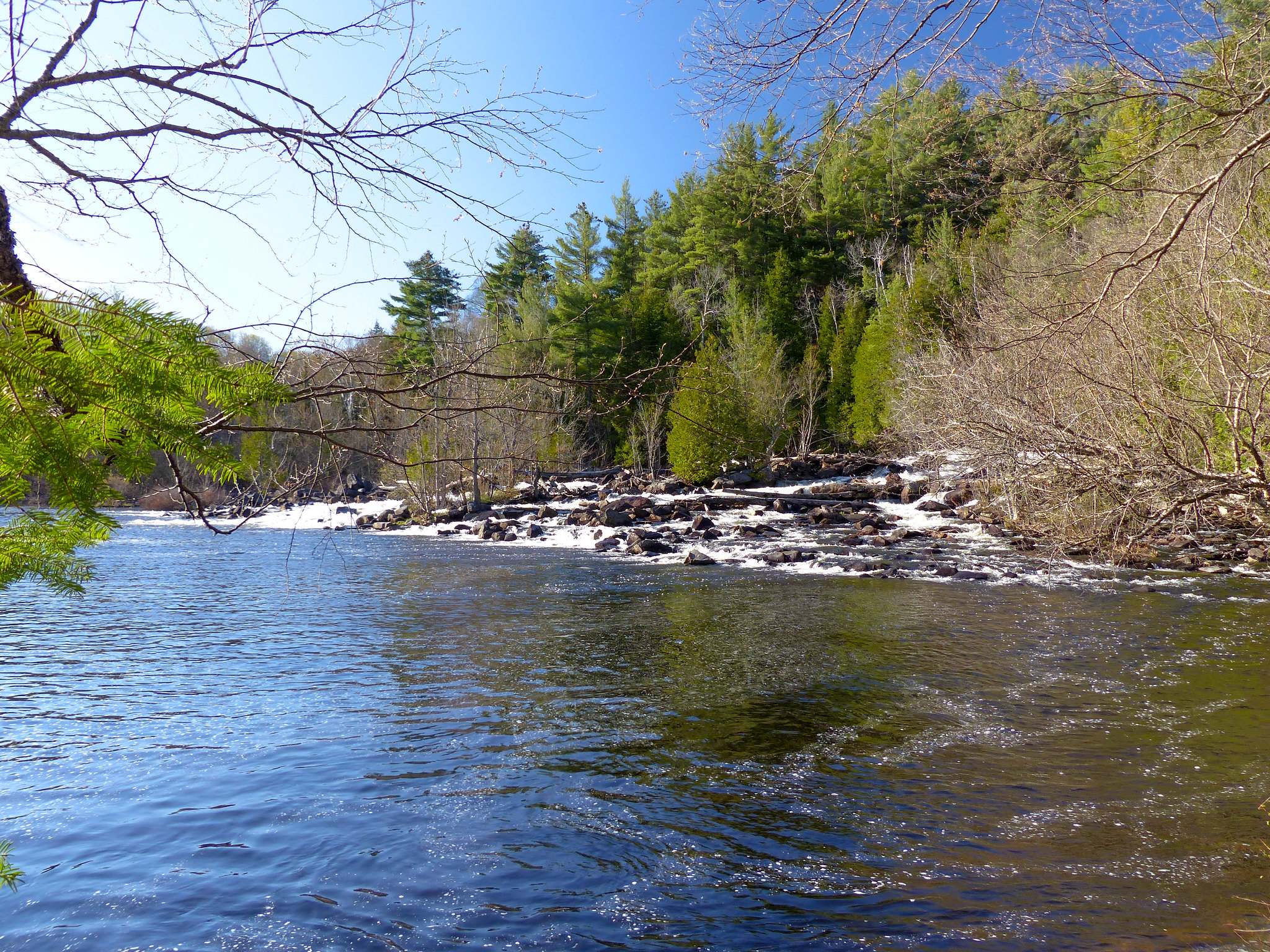 Oxtongue River - Ragged Falls Provincial Park (3)