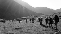 group of hikers near ortler in tirol