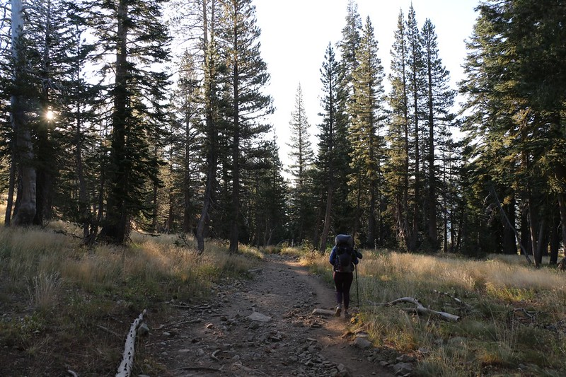 The Pacific Crest Trail is wide like a highway as we head south toward Echo Lake