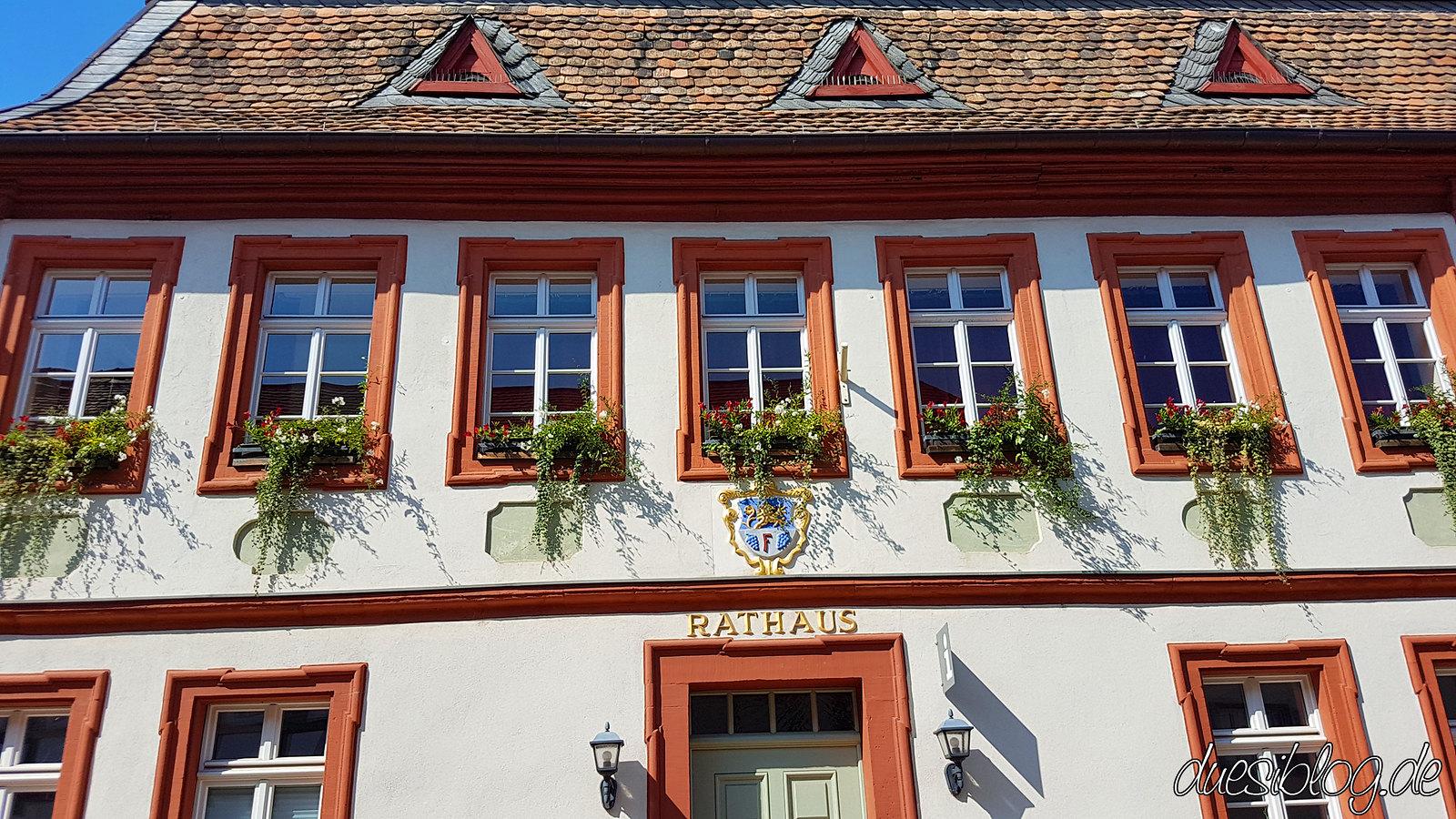 Freinsheim Pfalz duesiblog travelblog 05