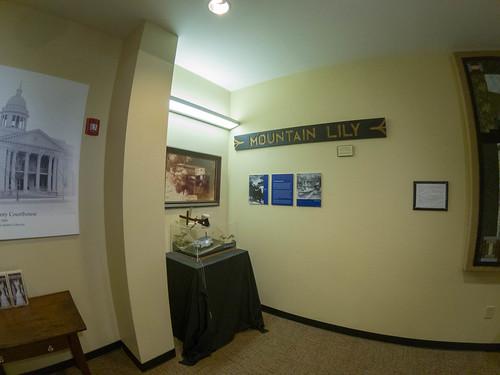 Mountain Lily Exhibit-003