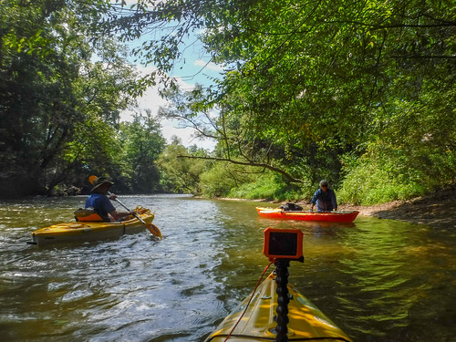 French Broad River - Rosman to Island Ford-178
