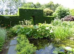 2018.06.20.065 CASTILLON - Les jardins, le jardin d'eau
