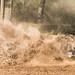 Autocross_578