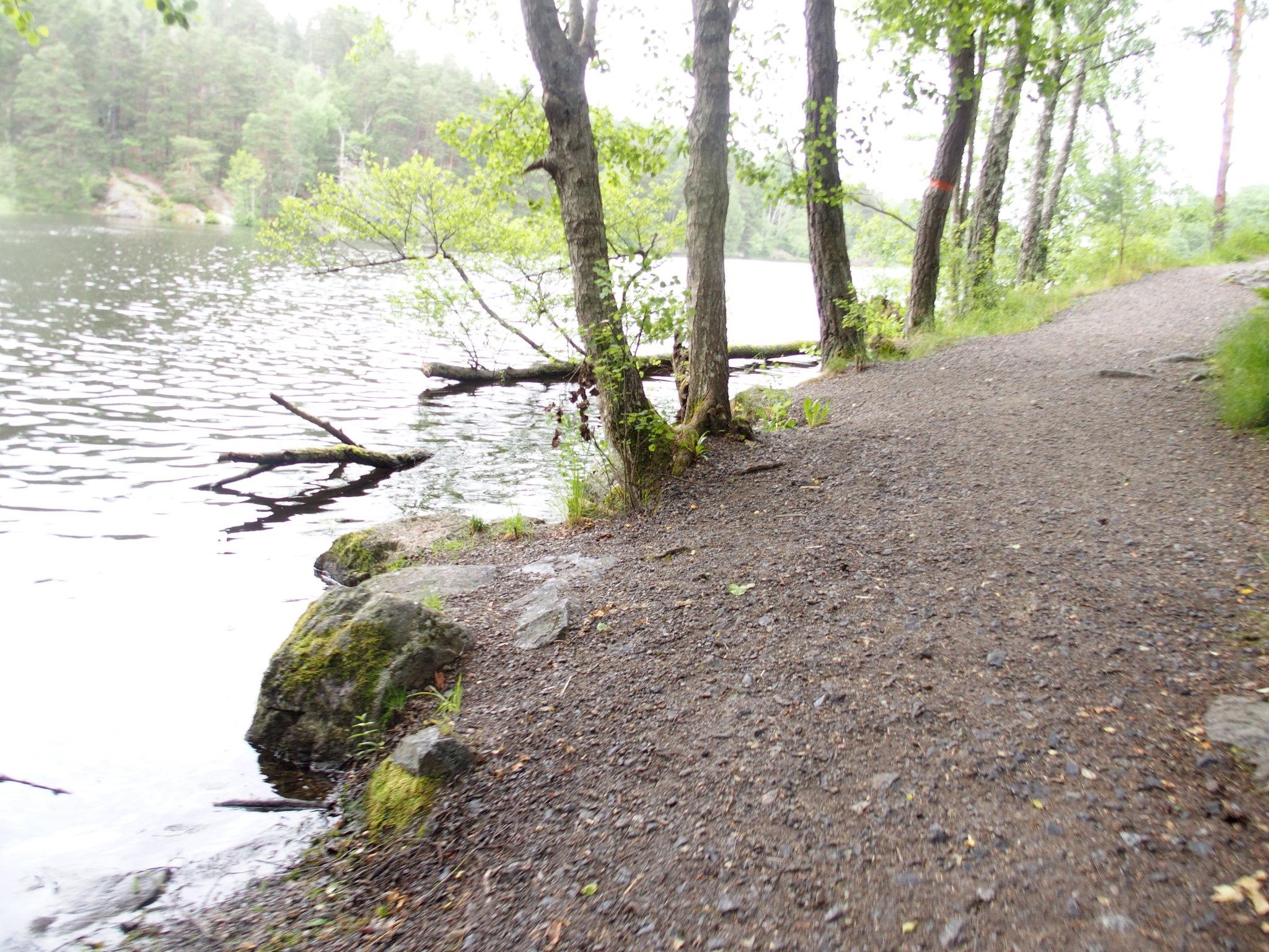SÖ E3 Albysjön