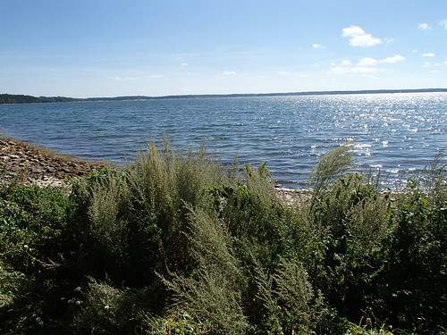 SÖ E53.1 Havet2