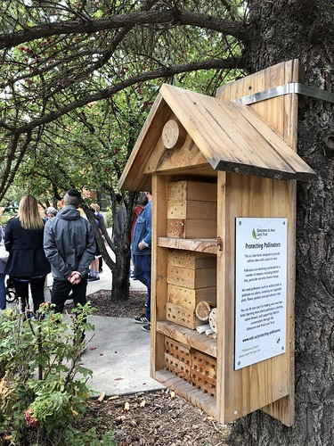 MacEwan Urban Beekeeping Tour