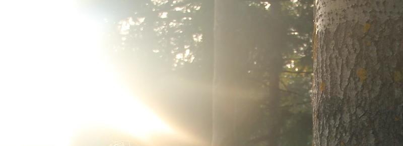 elo-syyskuu 2014 107