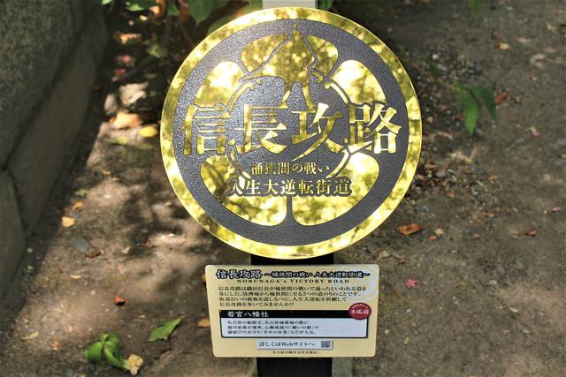 wakamiyahachiman004