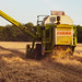Claas Combine in field next to our house