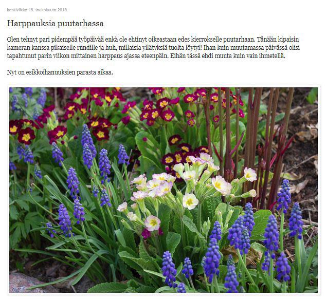 Harppauksia puutarhassa.jpg