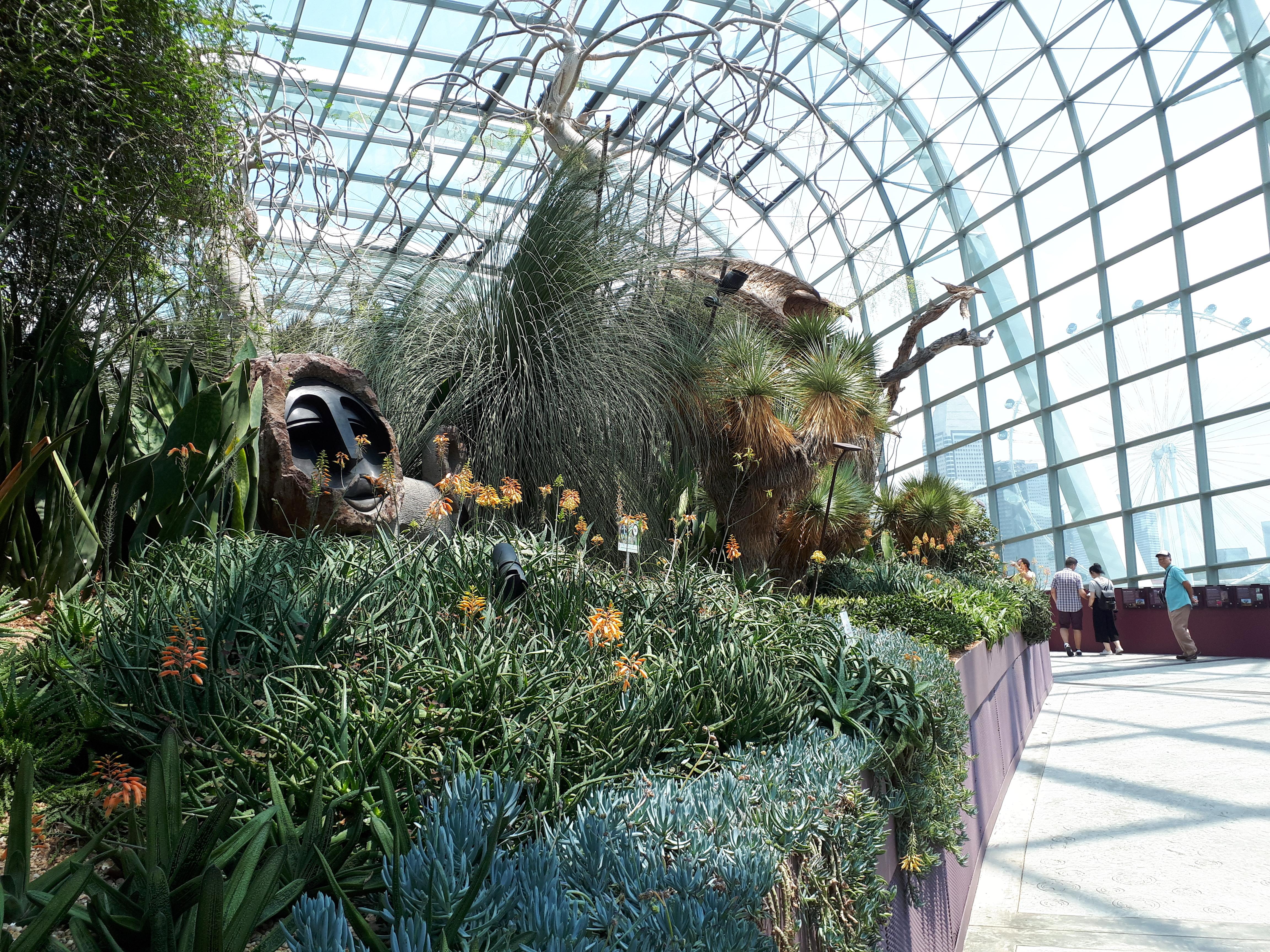 Garden by the bay,Singapour 43285994895_3c86e394e8_o