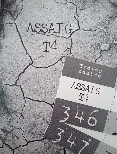 Assaig T4