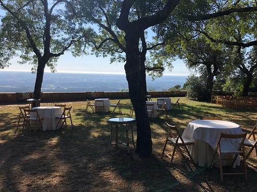 Patricia and Scott's wedding, Bussaco, Portugal