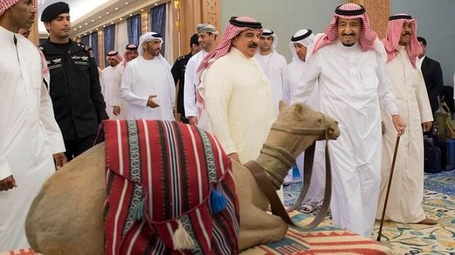 3740 King Salman sacrificed 5,000 Animals on Eid ul Adha this year