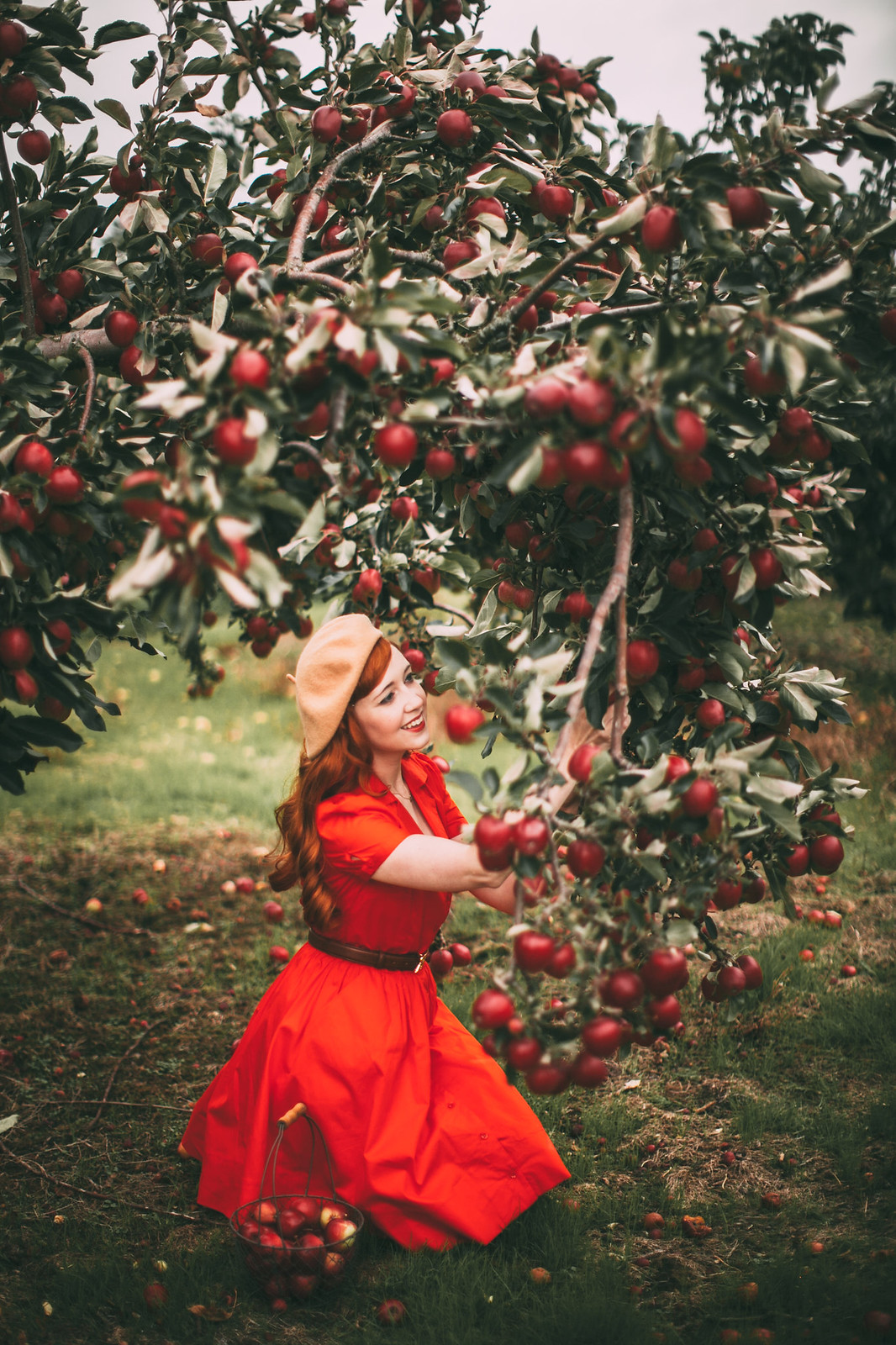 red apples-16