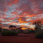 Australia's Western Desert