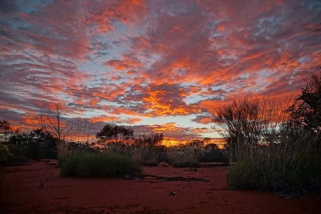 Western Australia Desert