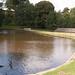 Lyme Park  (24 of 24).jpg