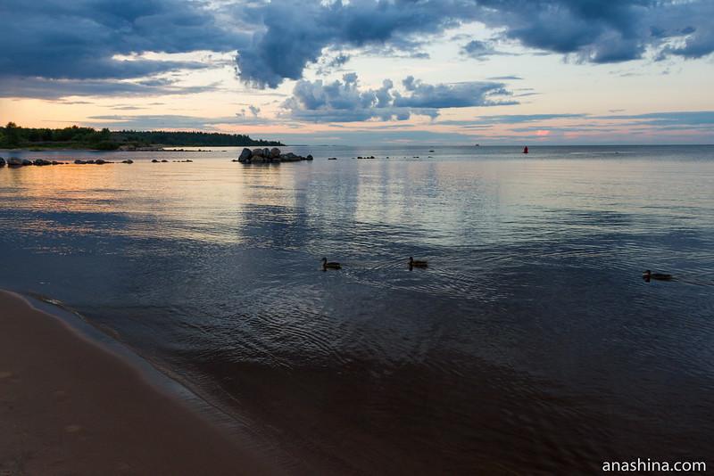 Закат, Ладожское озеро, Приозерск