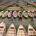boat market by Sabina BD