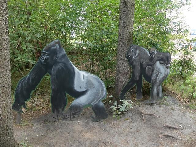 Zu den Gorillas, Zoo Givskud