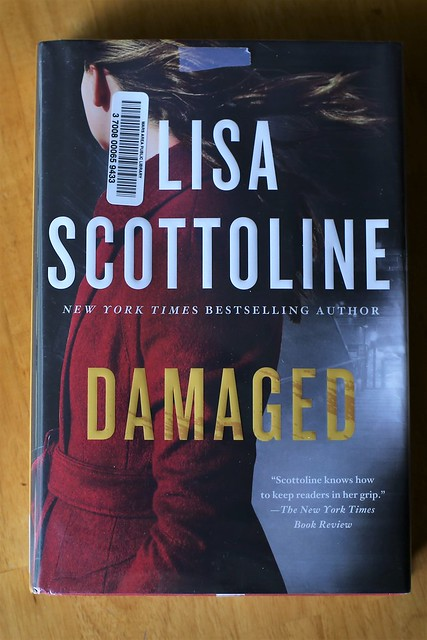 Lisa Scottoline Damaged