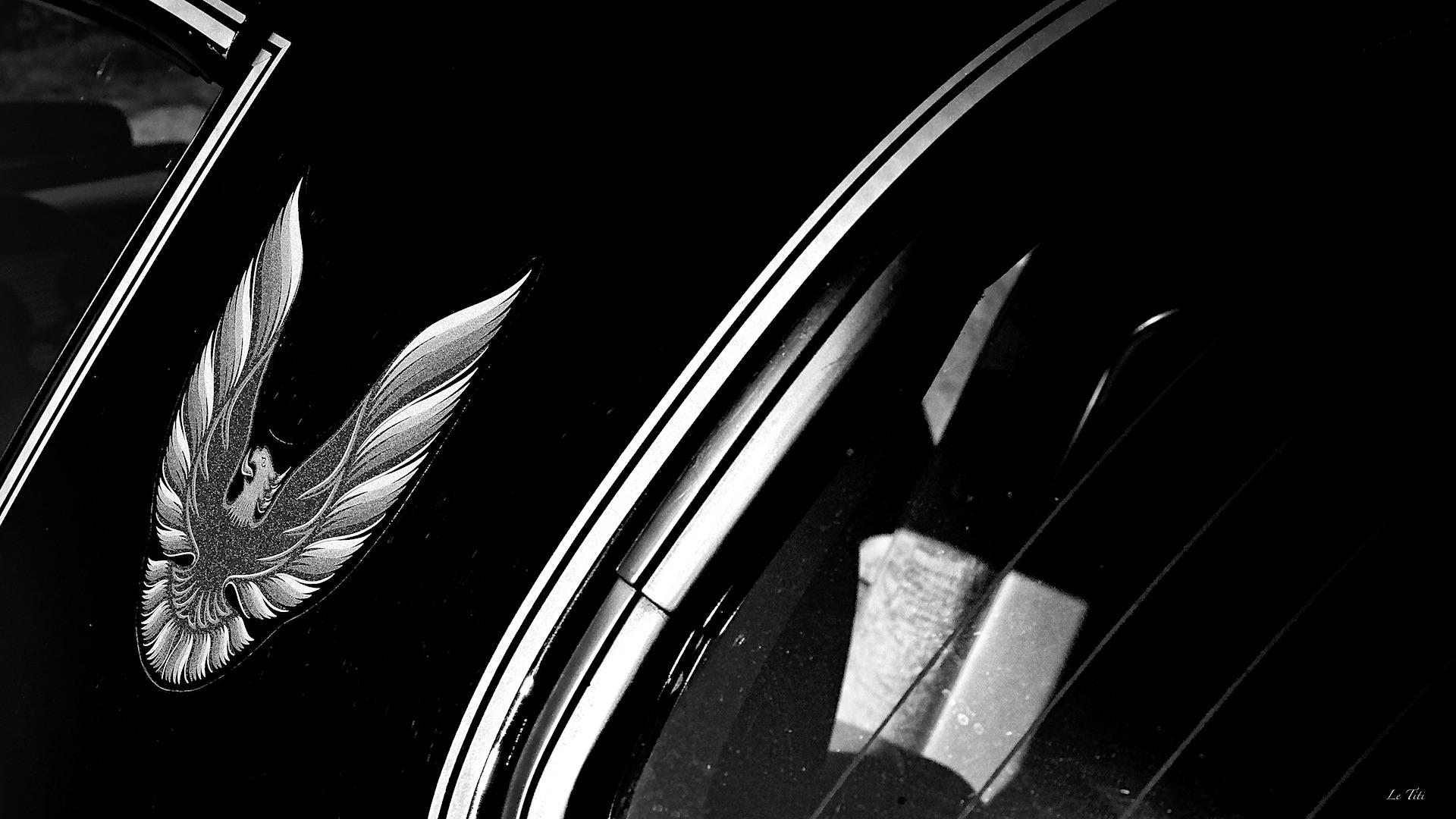 + ou -  Old Caisses et deux roues au DPM & SD1M - Page 4 44501585202_1bc80c3467_o