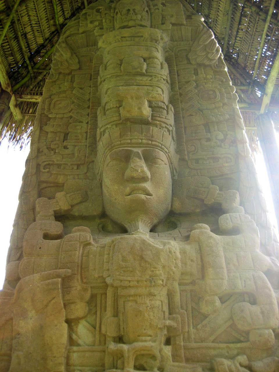 Stela D, north side, from Quiriguá, representing king K'ak' Tiliw Chan Yopaat. Photo taken on January 27, 2008.