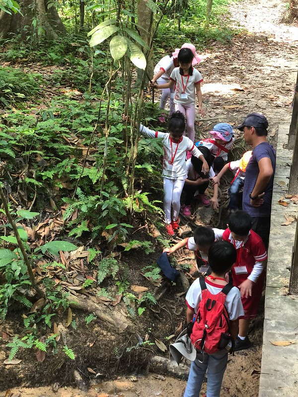 Childcare in Serangoon