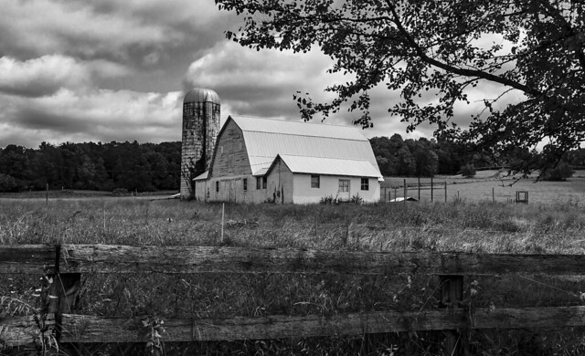 white barn bw