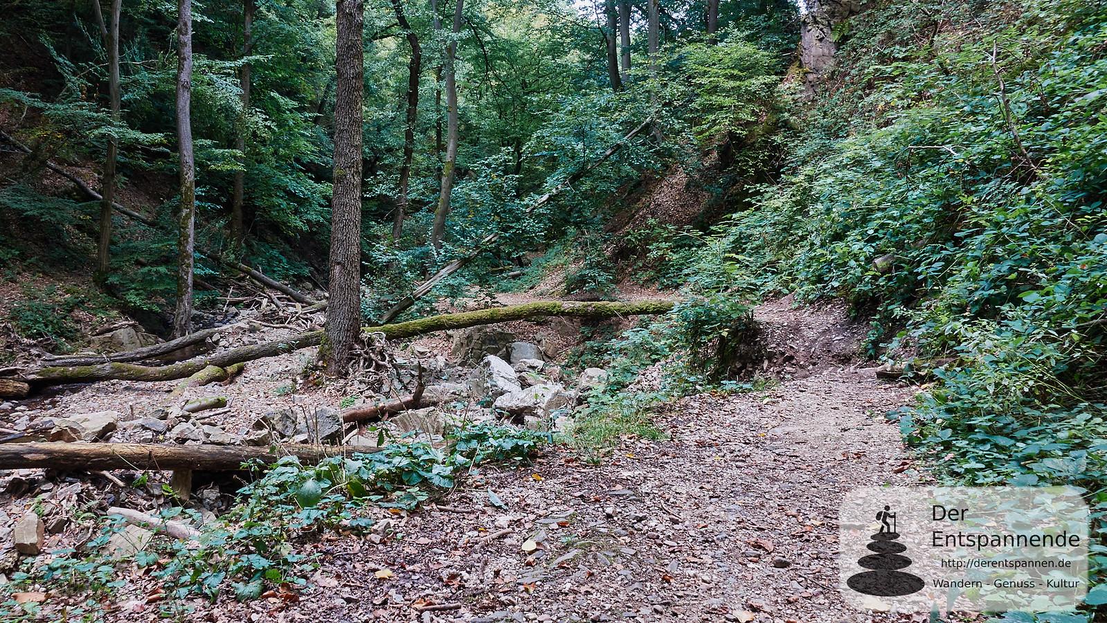 Weggebrochener Weg im Morgenbachtal