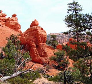 Red Canyon, UT 9-09