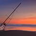 Stranded Sails IV
