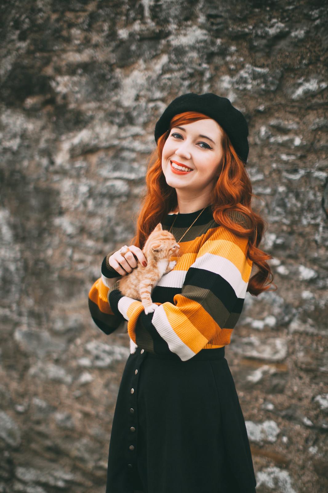 ginger kitten-5