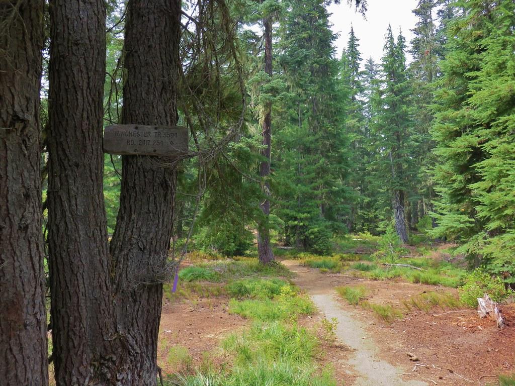 Winchester Trail