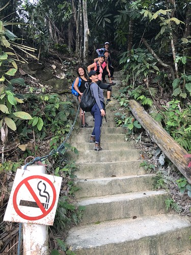 Bukit Saga - Apex Hill Adventure