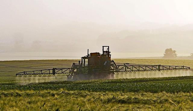 Glifosato é um dos herbicidas mais utilizados no agronegócio brasileiro - Créditos: Pixabay