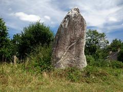 Le menhir dit « La Pierre Longue » près de Pluherlin - Morbihan - Août 2018 - 08